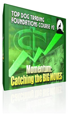 Top Dog Trading DVD Course 1&2