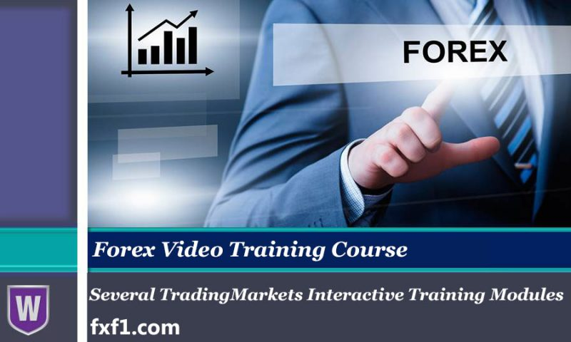 several TradingMarkets interactive training modules