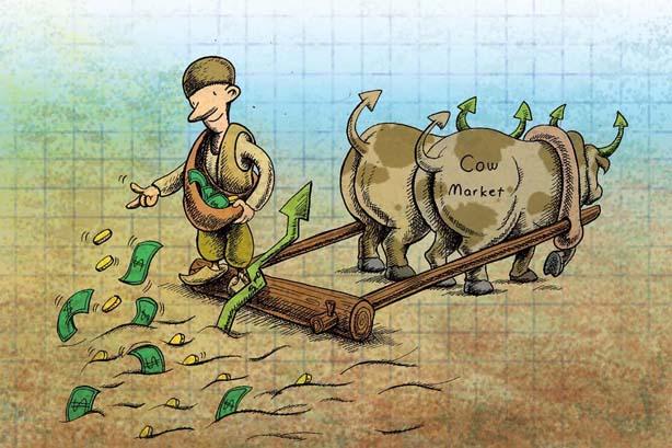 بازار گاوی وبازار خرسی