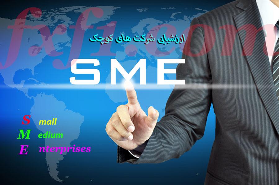 ارزشیابی شرکت های کوچک