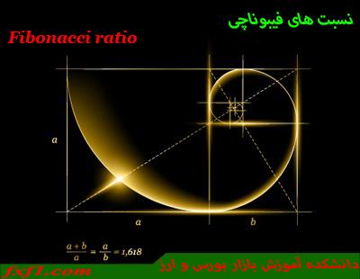 آموزش تصویری فیبوناچی با حمید اسلامی
