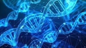 پیشتازترین شرکت فعال در زمینه ارایه خدمات توالی ژنتیک