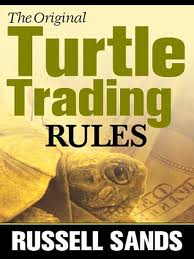 turtle rules